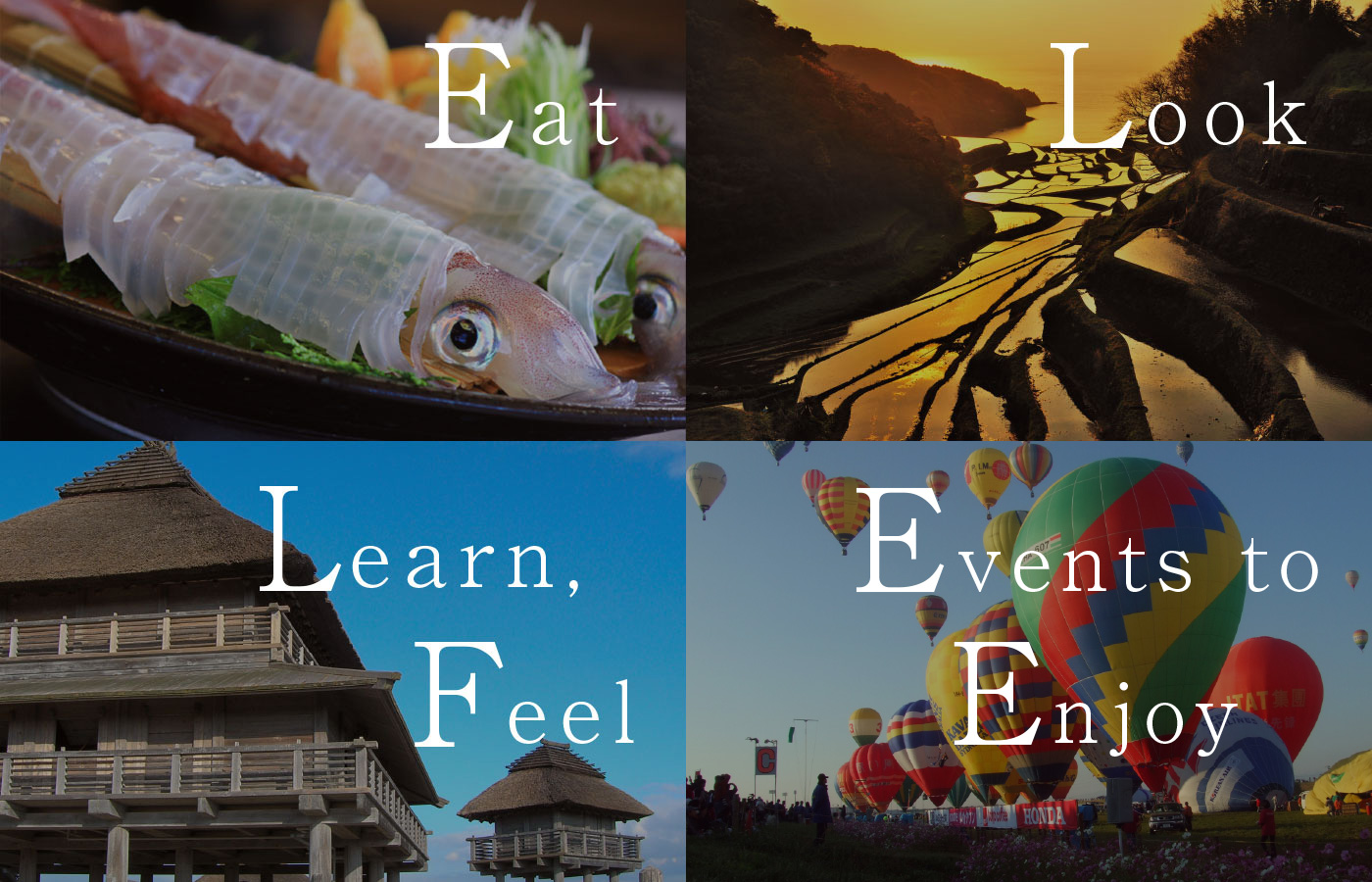 Eat.・Look・Learn, Feel・Events to Enjoy